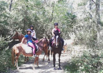 Great Horse Spirit, Holistic Riding, Umbria, Italy