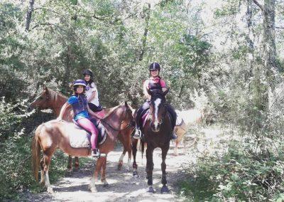 Great Horse Spirit, Holistic Riding, Umbria, Italy