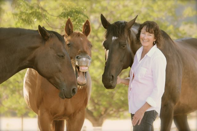 The Academy for Coaching with Horses – Colorado