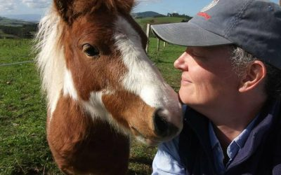 10 easy ways to practise animal communication